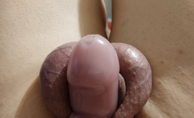 Smooth And In Chastity