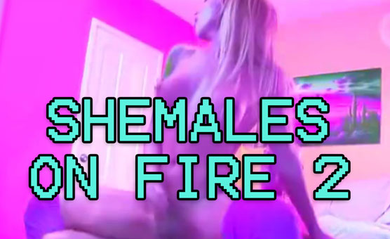 Shemales On Fire 2