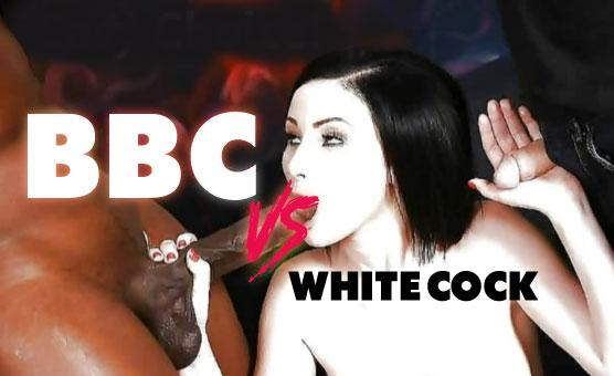 BBC Vs White Cock - Special 2