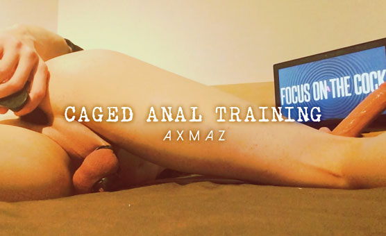 Caged Anal Training