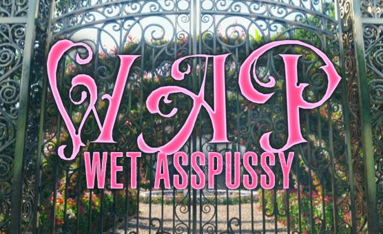 Wet Asspussy - A BBC Poppers PMV